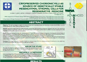 pageshot of 'test biocellcenter it wp-content uploads 2013 03 Progetto-Villi-Coriali pdf' @ 2013-04-03-1428